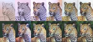 Chinese leopard - walkthrough