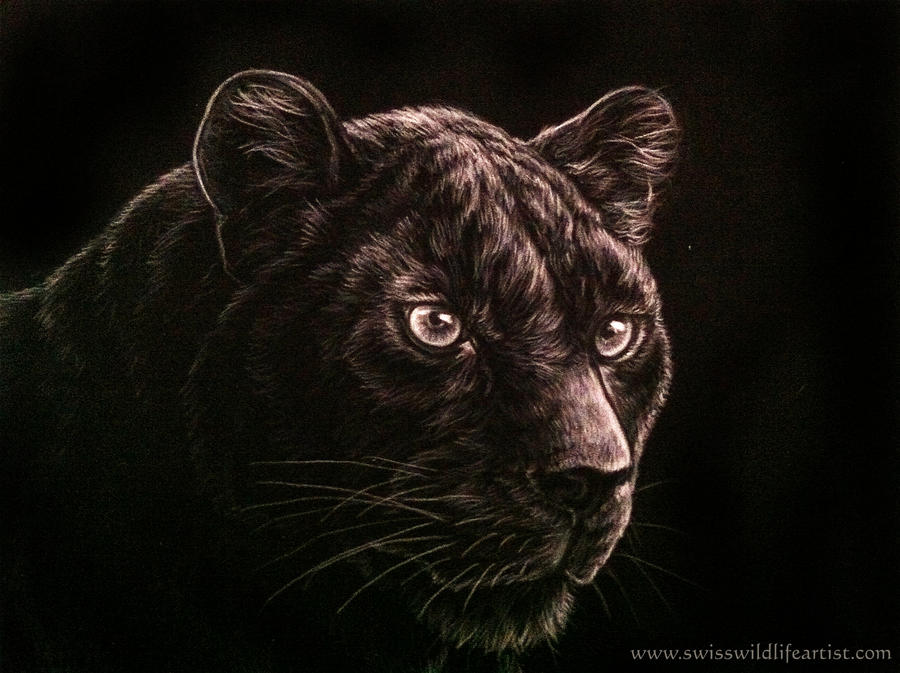 Black Panther Drawing Face Images & Pictures - Becuo Panther Face