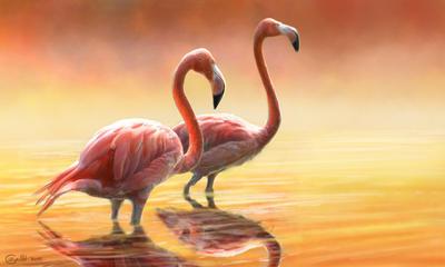 Red Tango by Bisanti