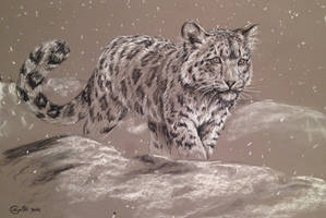 First snow - sketch by Bisanti