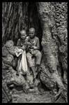 Ta Phrom Tree Children