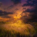 Approaching Storm Premade Background