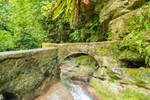 Jungle Castle Bridge Stock