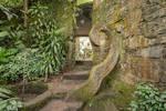 Jungle Castle Swirl Stock