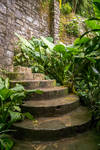 Jungle Castle Stairs Stock