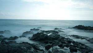 Sea Cauldron Stock
