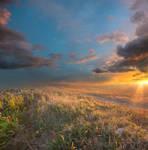 Sundown Premade Background