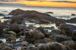 Sea Rocks Sunrise Stock