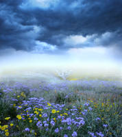 Spring Meadow Background by little-spacey