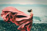 Bloom - Sarah Bowman Photography
