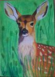 The Deer by Kokieciara