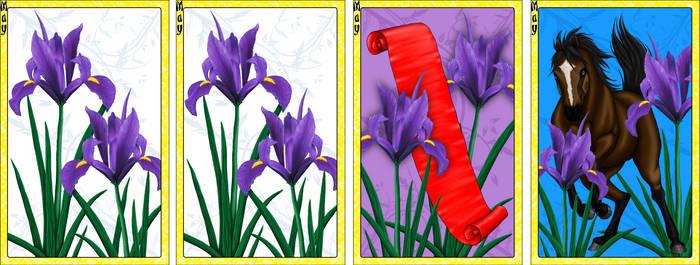 Go Stop Card Game Custom Design - May