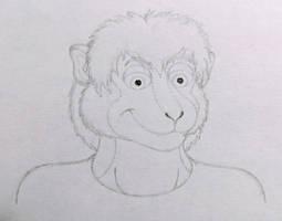 Monk SaGowen - Head Sketch