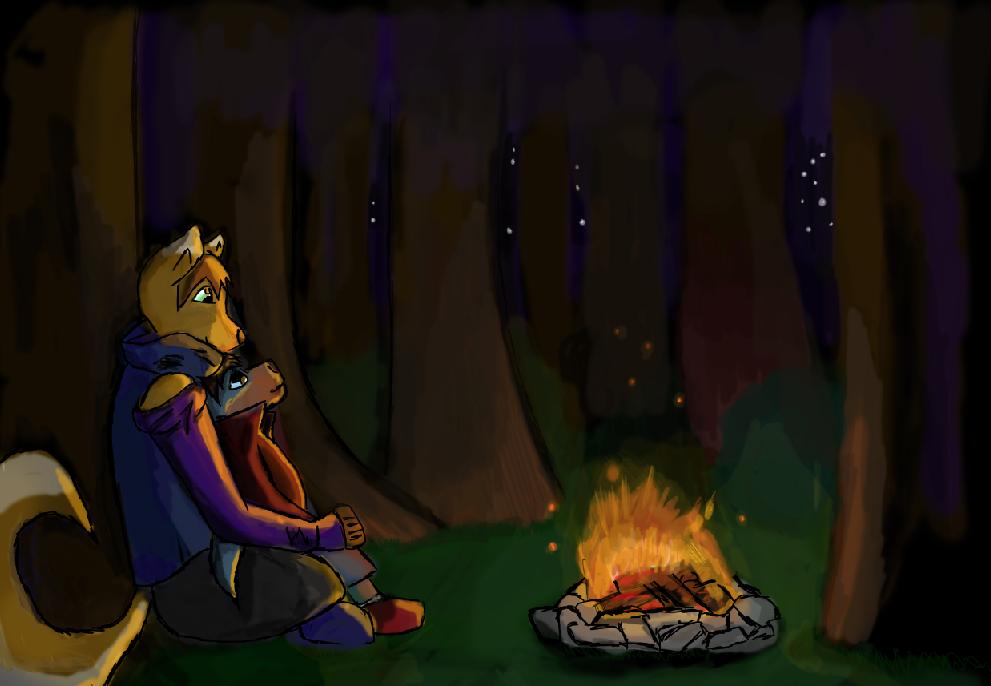 Camp Fire by SammyPup