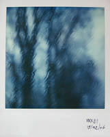 Pola - weather by mathildedn
