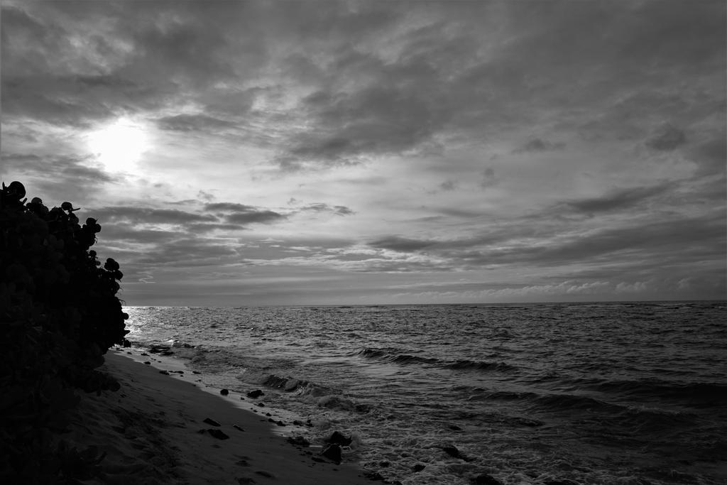 Hawaii sunset in bw by EllieZ