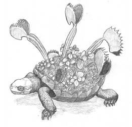World Turtle by Asanbonsam
