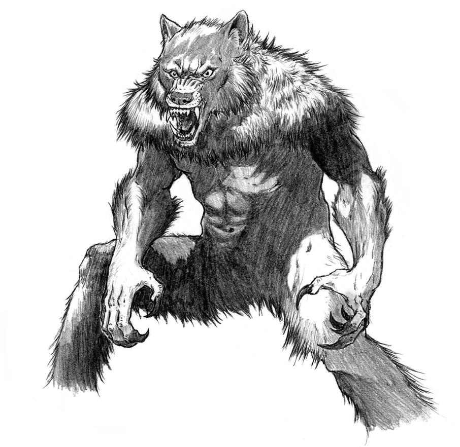 Wolf Coloring Pages Alpha