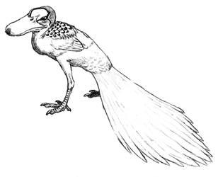 allocene duck by Asanbonsam