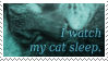 Stamp : I watch my cat sleep by kaifcsl