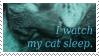 Stamp : I watch my cat sleep by kaifcsl