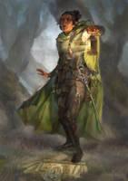 Elven Rogue Commission