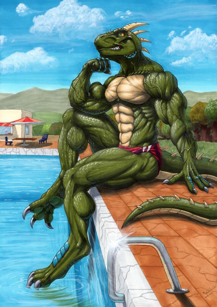 Croc critiques animal porn