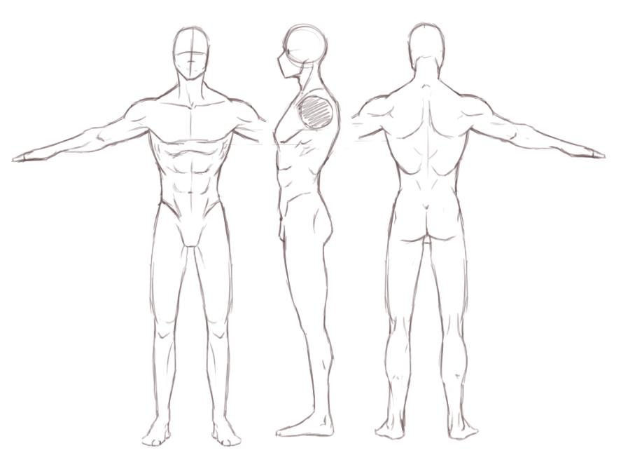 Male Turnaround Study by Darkenmarr
