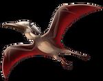 Pteranodon Companion by Shivali-Lorekeeper