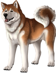 Dog Companion by Shivali-Lorekeeper
