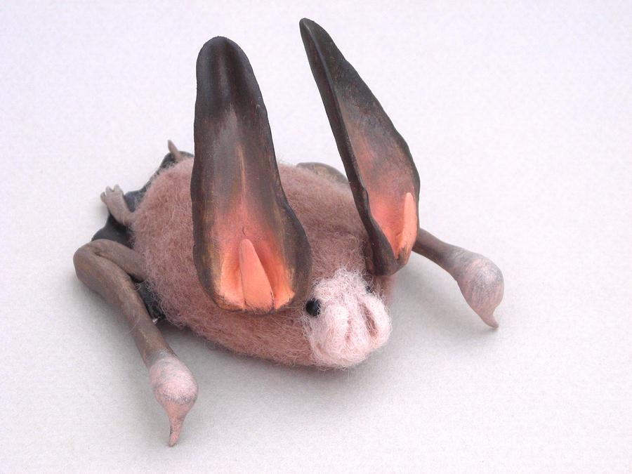 Townsend's Big Eared Bat by creturfetur