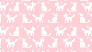 F2U Kitten Custom Box Background by cloversoda