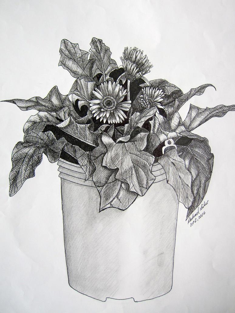 Potted Plant By Rlinker On Deviantart