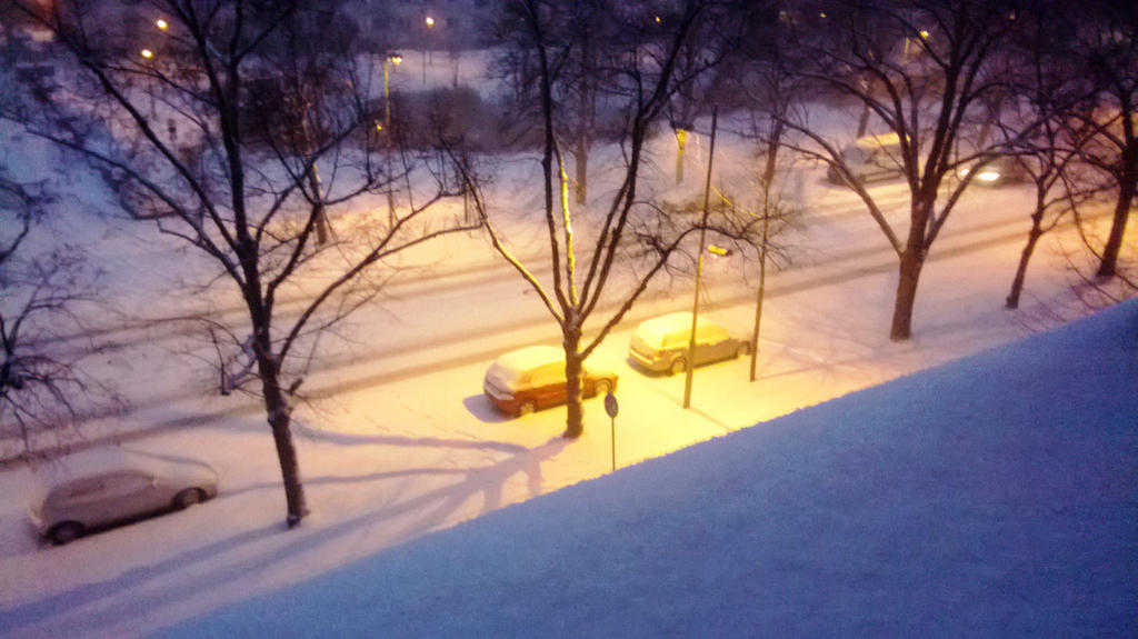 343 - Der letzte Wintertag / the last winter day by Cocuri