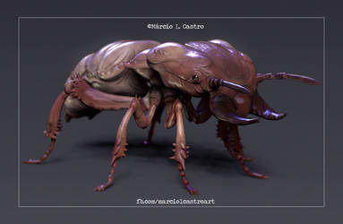 Termite by marciolcastro