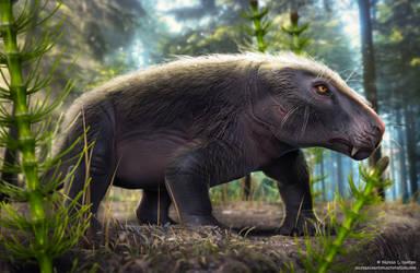 Siriusgnathus niemeyerorum - cynodont