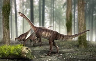 Plateosaurus - Macrocollum