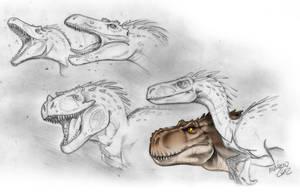 Dinosaurs by marciolcastro