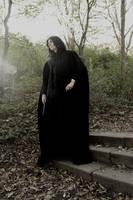Severus Snape by Lari--Chan