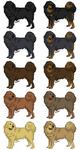 Dog :: Tibetan Mastiff