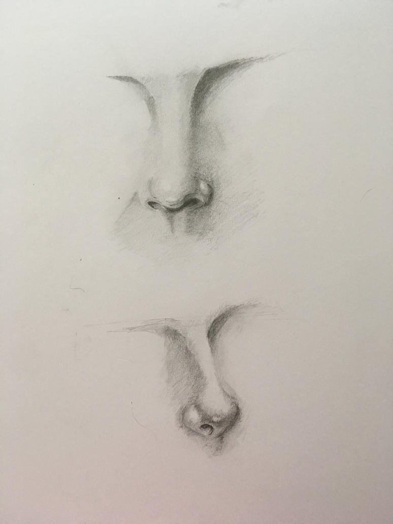 Realistic noses practice by Ktoran