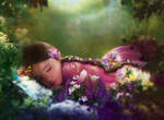 magical slumber