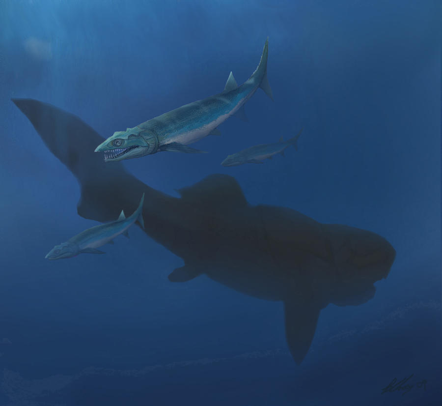 Tegeolepis and Dunkleosteus