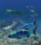 Mimipiscis bartrami on the Gogo reef