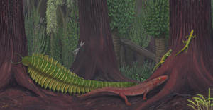 Joggins - Life in the Carboniferous