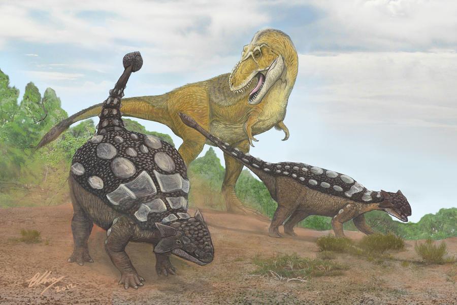 Ankylosaurus vs Rex by Gogosardina on DeviantArt