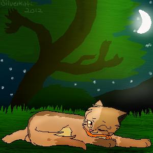 .: In the Moonlight :. by SilverKitti