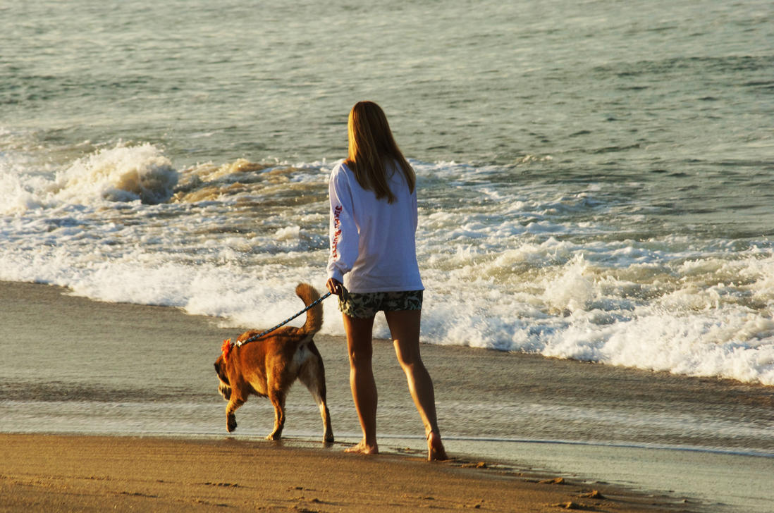must love dogs dating site Never mind the fact that more than one-third of all people who use online dating sites have and dogs, online dating in this site i find my love.