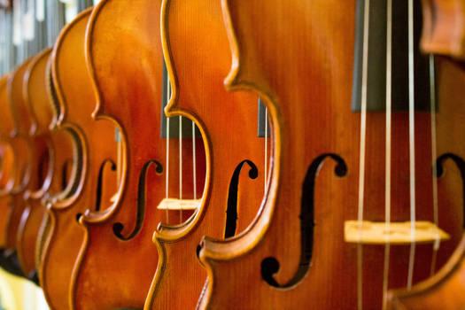 Day 28 - Violin Store