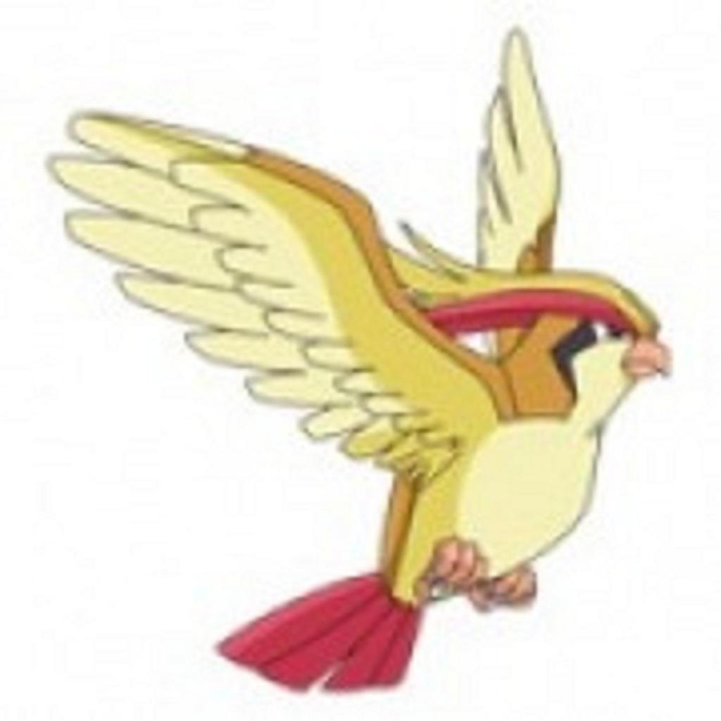 Pidgeot Images Pokemon Images